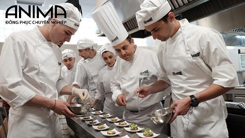 Là một bộ phận không thể thiếu trong đồng phục đầu bếp chuyên nghiệp